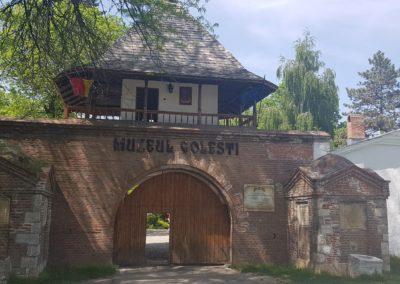 muzeul-golesti 2